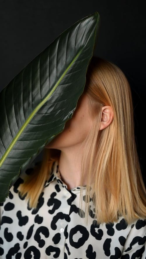 Female Model Behind a Leaf