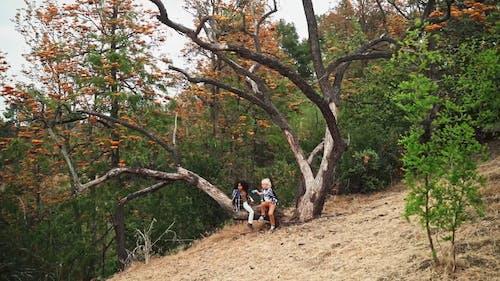 Kids Sitting on a Tree Trunk