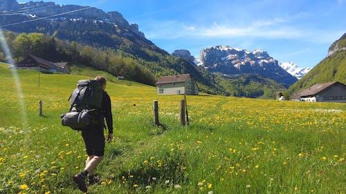A Backpacker Walking Between Flower Meadows
