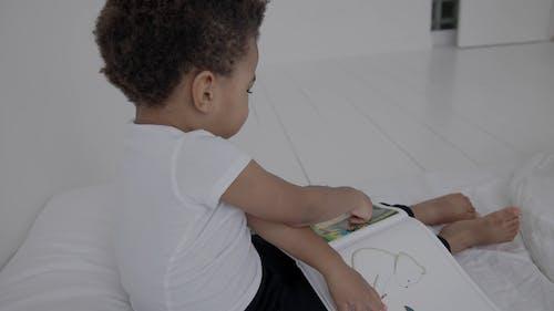 A Little Boy Holding Book