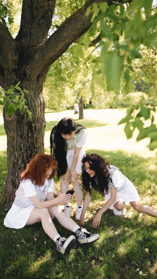 A Group of Friends Having Fun Under the Tree