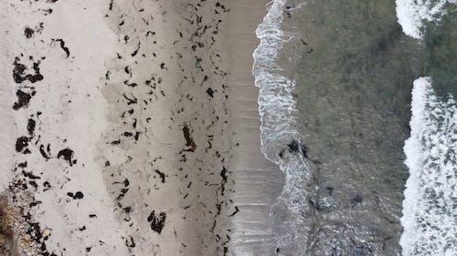 Birds Eye View of a Beach Shore