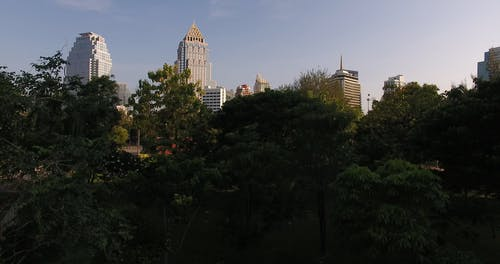 Drone Footage of a Park and High Rise Buildings