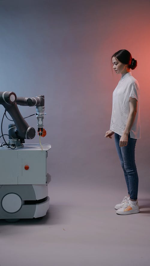 Robot Giving Flower To A Woman