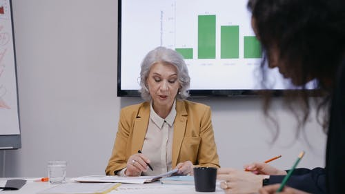Business Woman having a Meeting