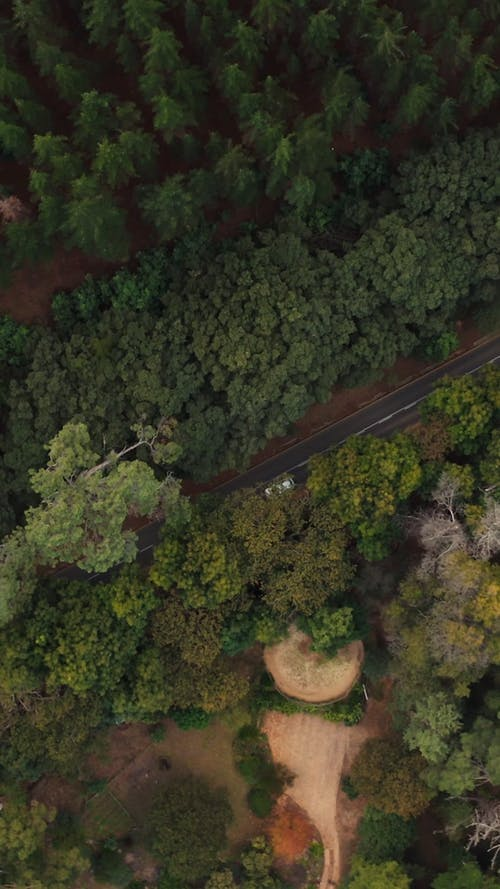 Aerial Footage of Cars on the Road