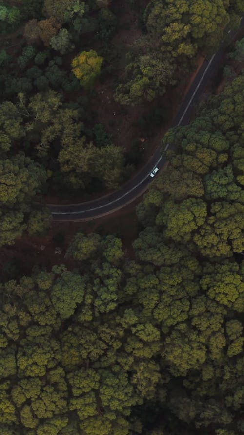 Drone Footage of Vehicles on the Road