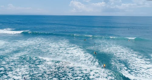 People Surfing In A Beach