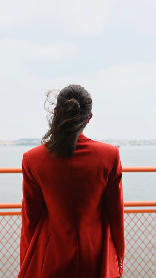 Back View of a Woman Looking a Sea
