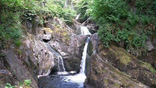 Pecca Falls at Ingleton Waterfalls Trail