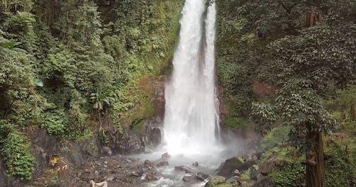 Rushing Waterfall