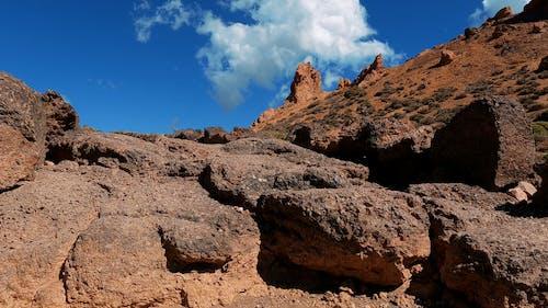 A Ground Level Shot of Rough Terrain