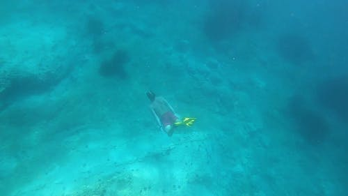 A Man Swimming Underwater