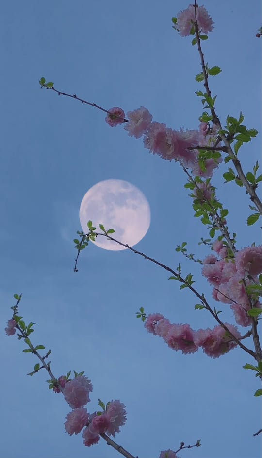 Moon In The Sky During Daytime