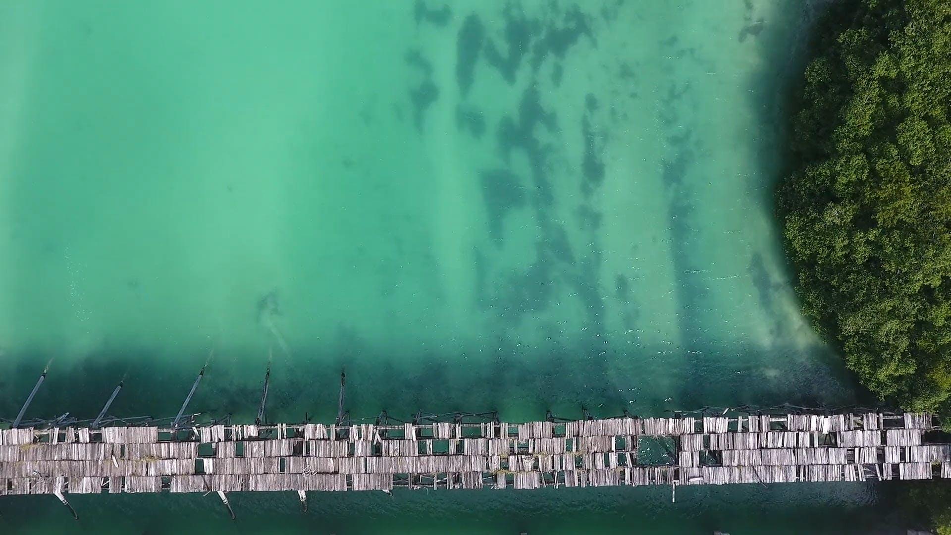 Aerial Shot Of Broken Bridge