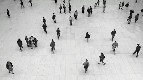 Zwart Witvideo Van Mensen