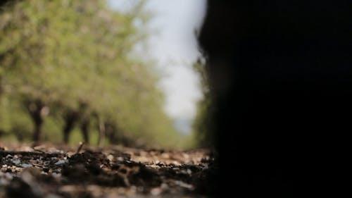Low Angle Shot Video Of Man Walking
