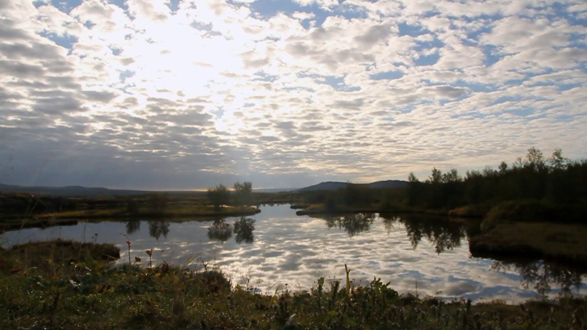 Video Of Calm River