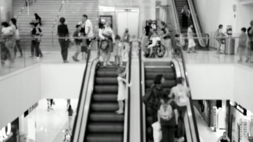 People On Escalators