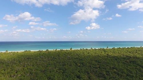Aerial Shot Of Coastal Area