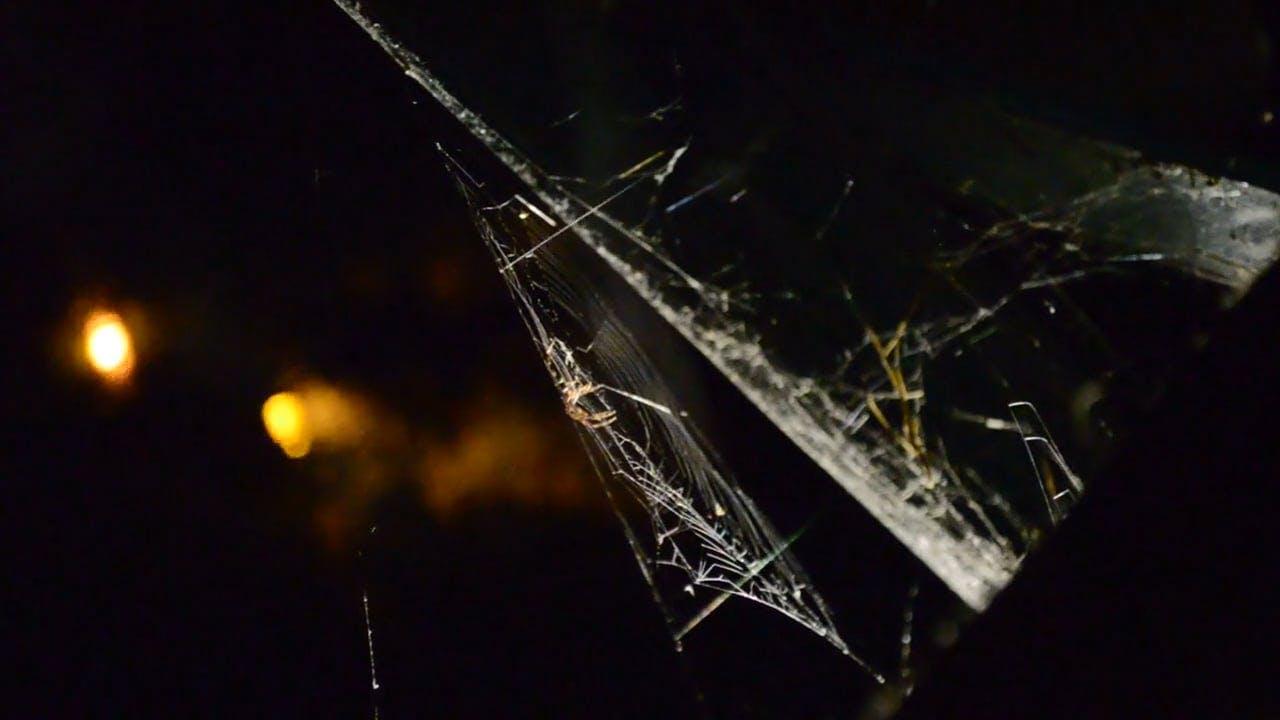 Spider Building A Spider Web
