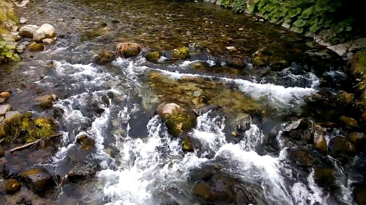 River Streamflow