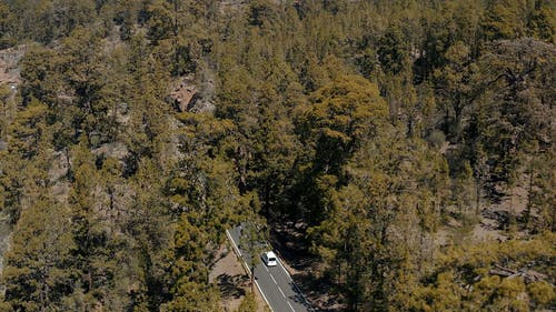 Aerial Shot of a Car Driving on Mountain Road