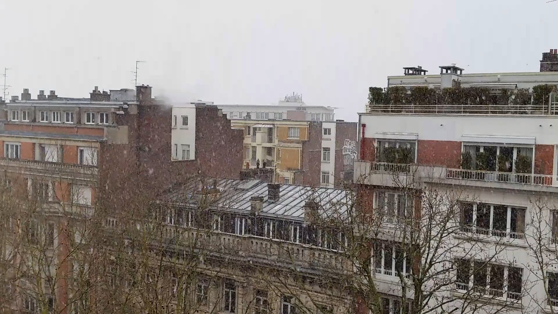 Snowfall In The City