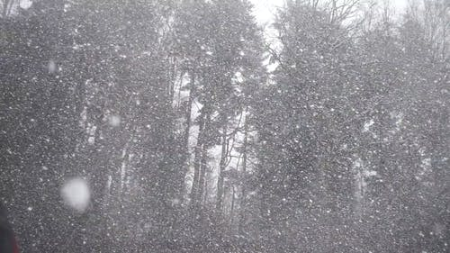 Video Of Snowfall