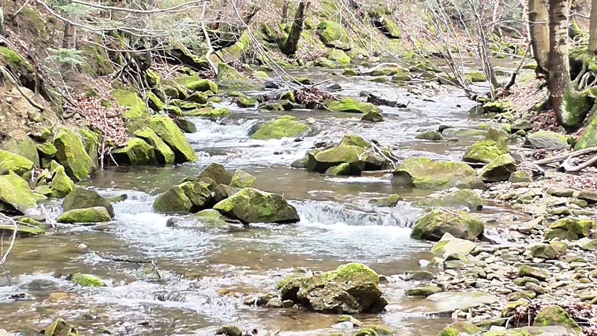 A Flowing Stream