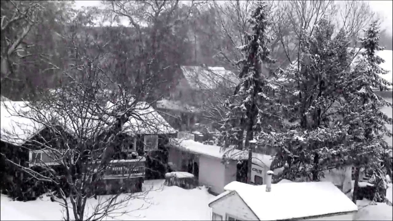 Black And White Video Of Snowy Day