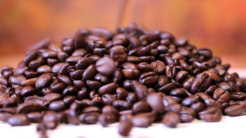 Video Of Coffee Beans
