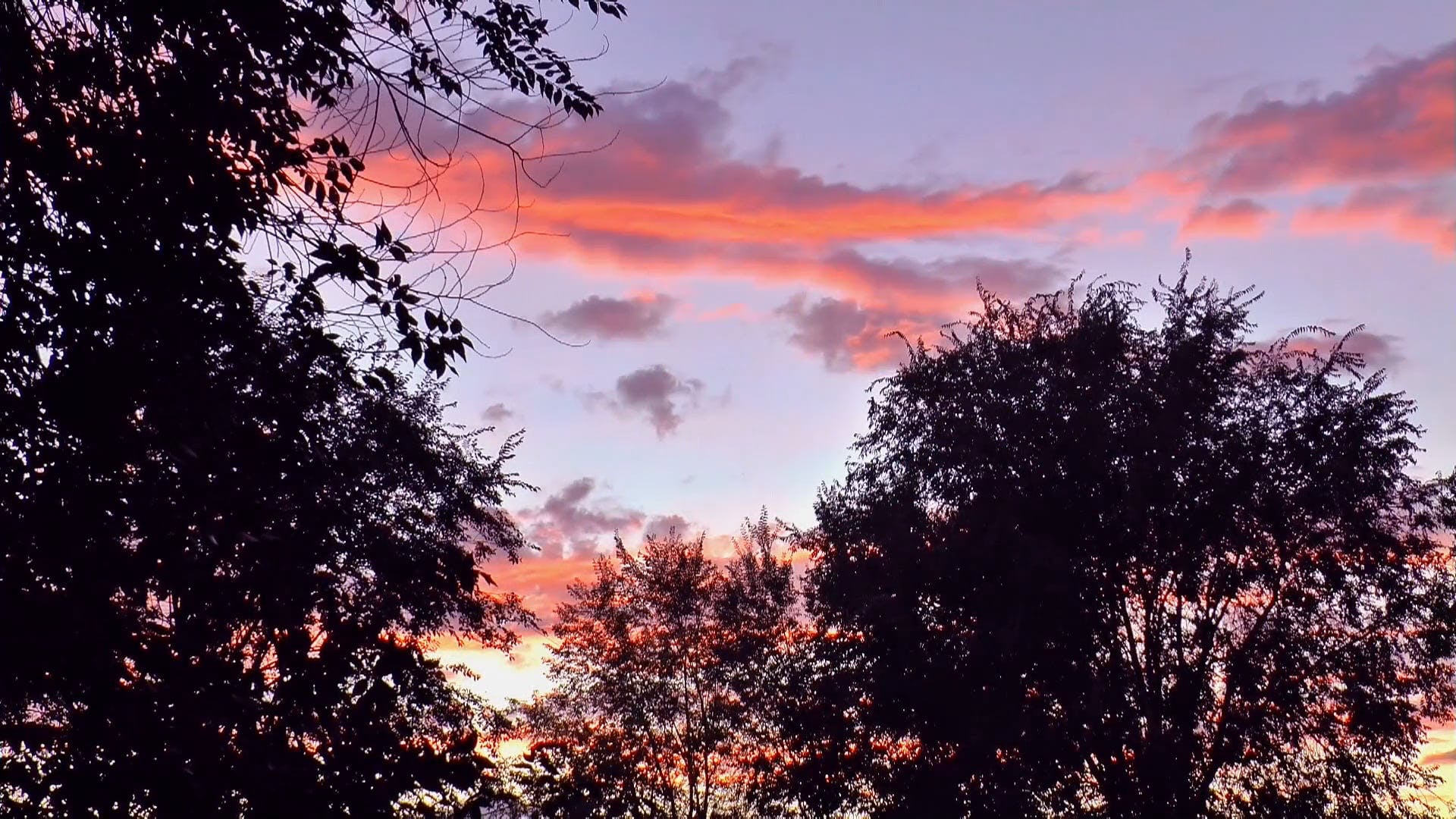 Footage Of Sunset