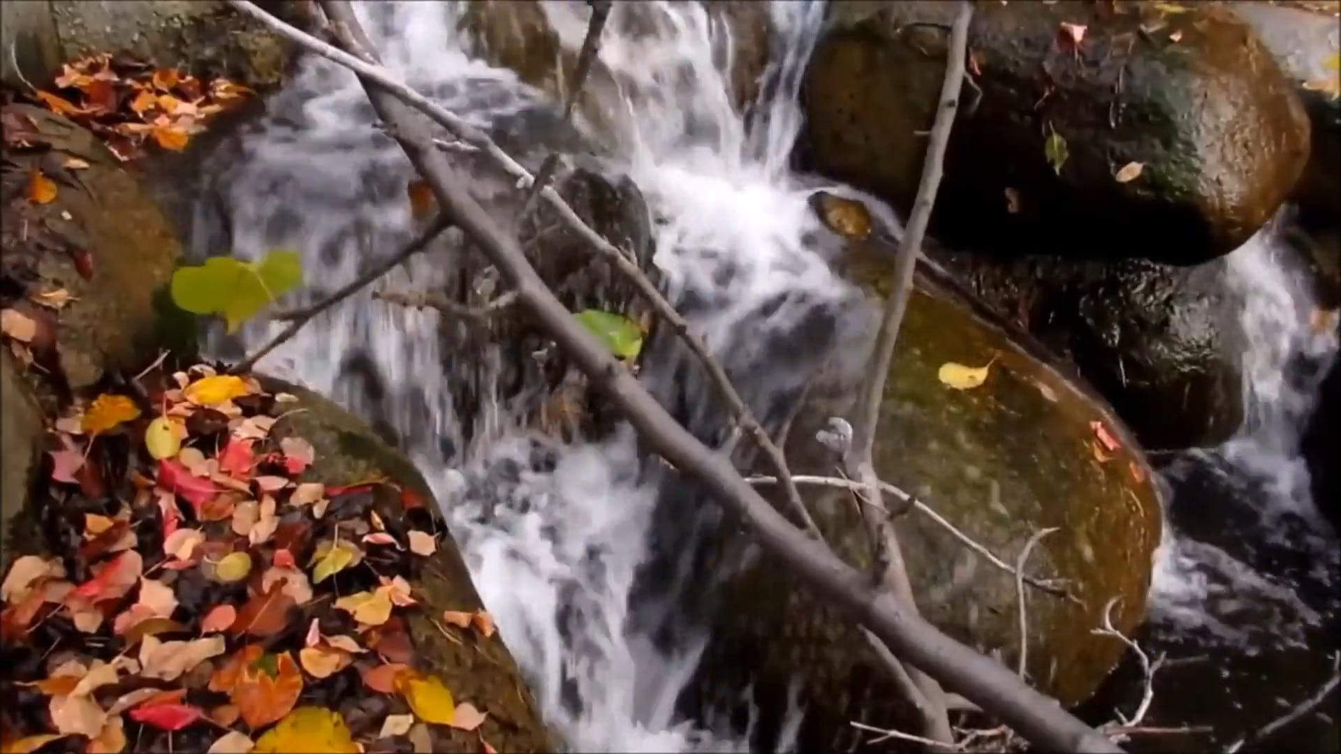 Footage Of Stream