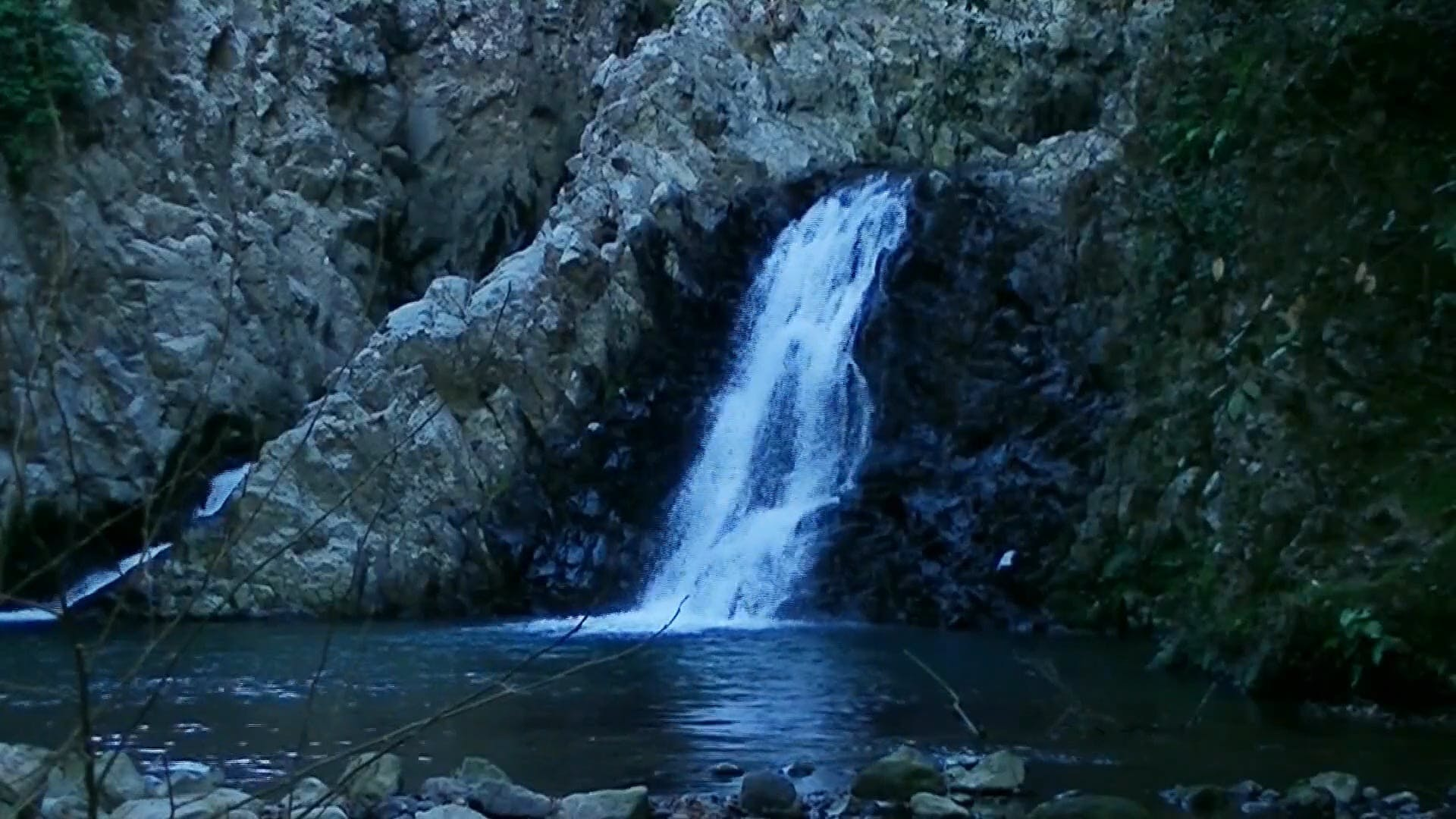 Nature's Waterfall Footage