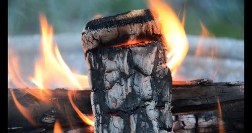 Close-Up Video Of Wood Burning