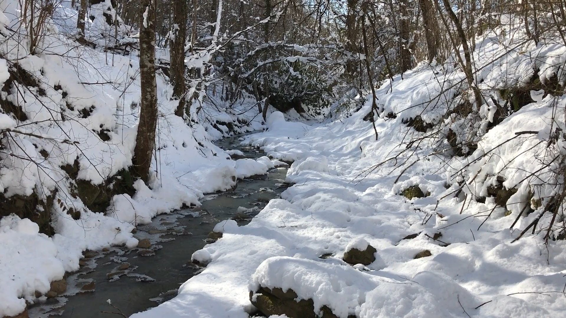 Snowcapped River