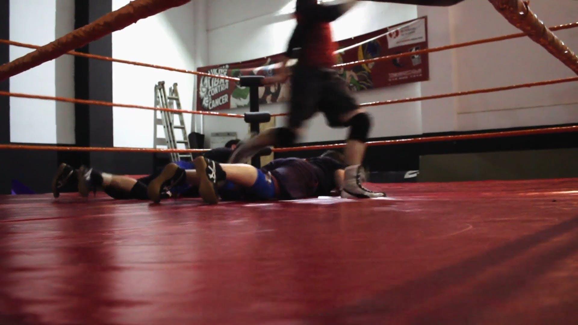 Training Inside The Ring