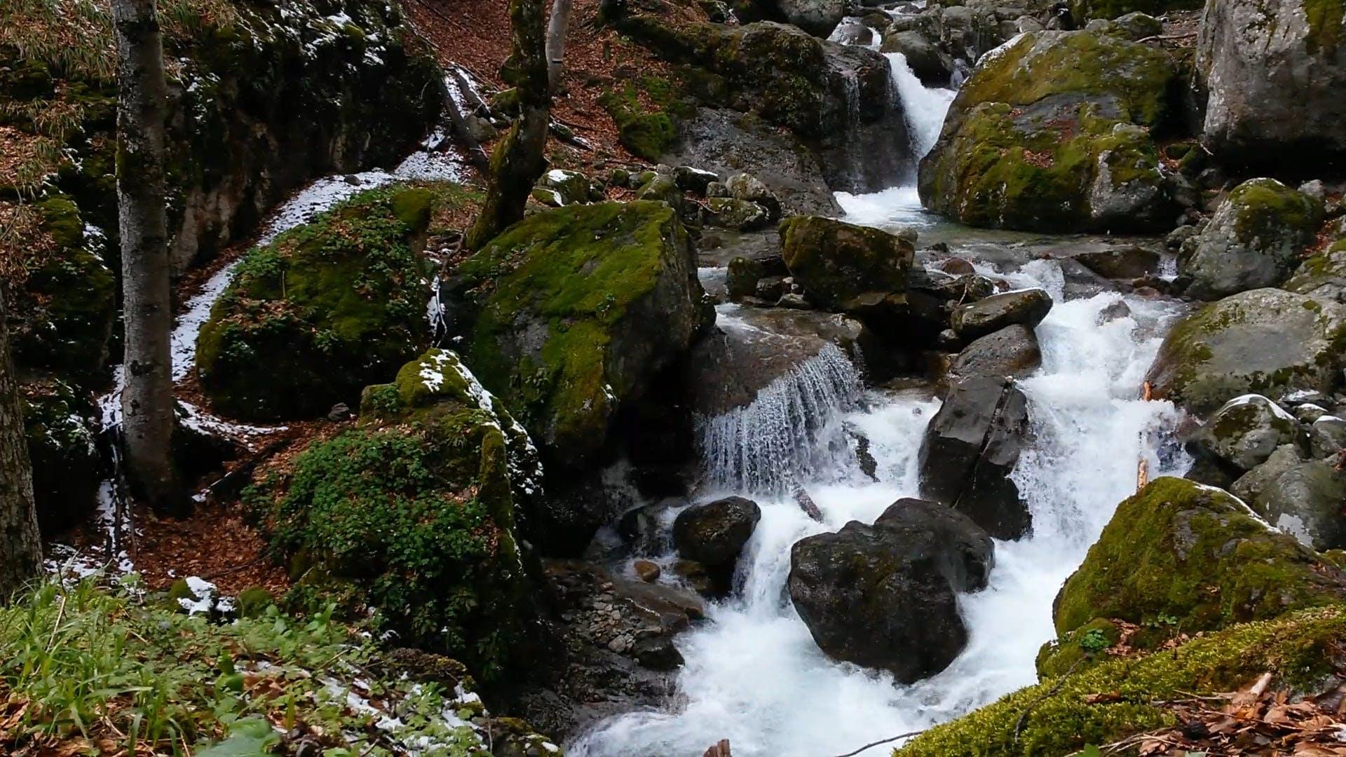 Snow Falling On River Stream