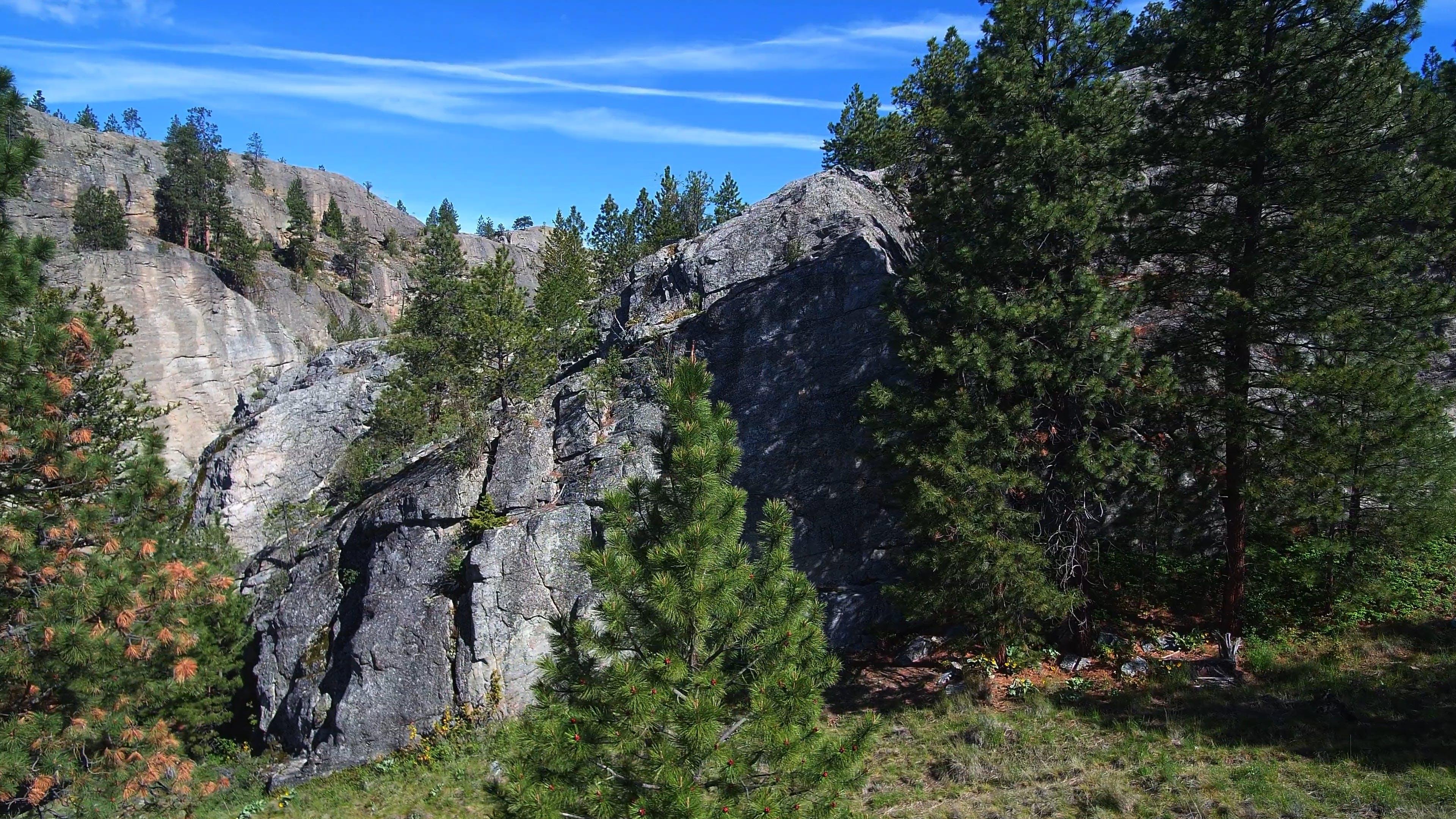 Nature Park Video