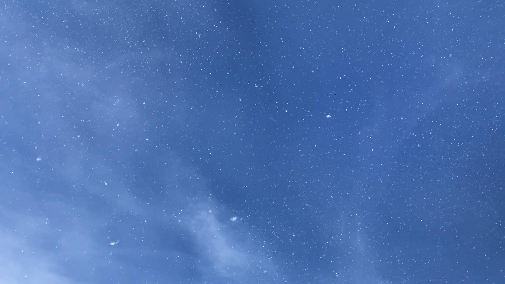 Snowyfall
