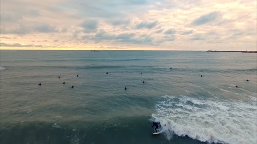 Video Of Surfers