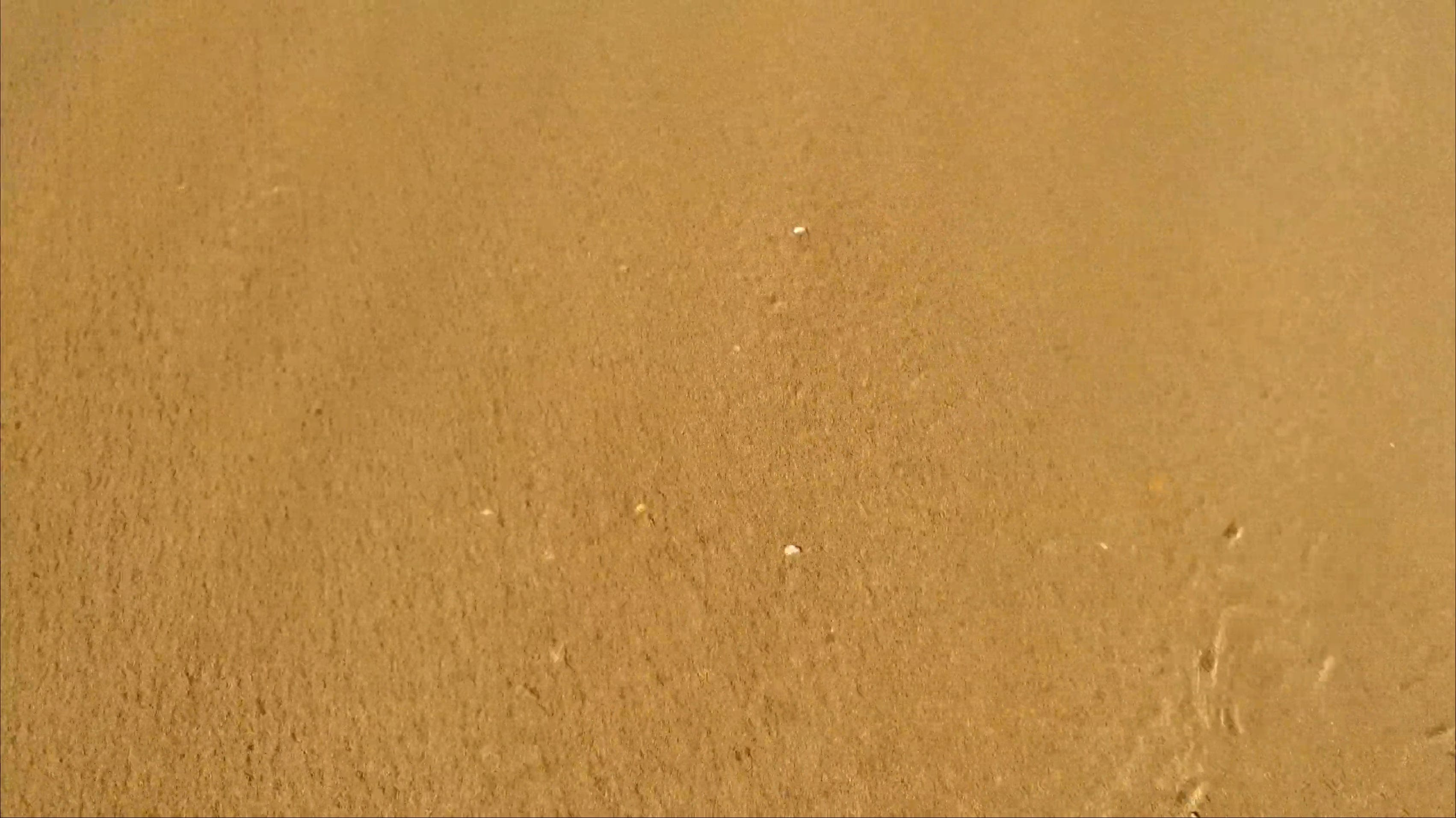 Close Up Video Of Beach Waves