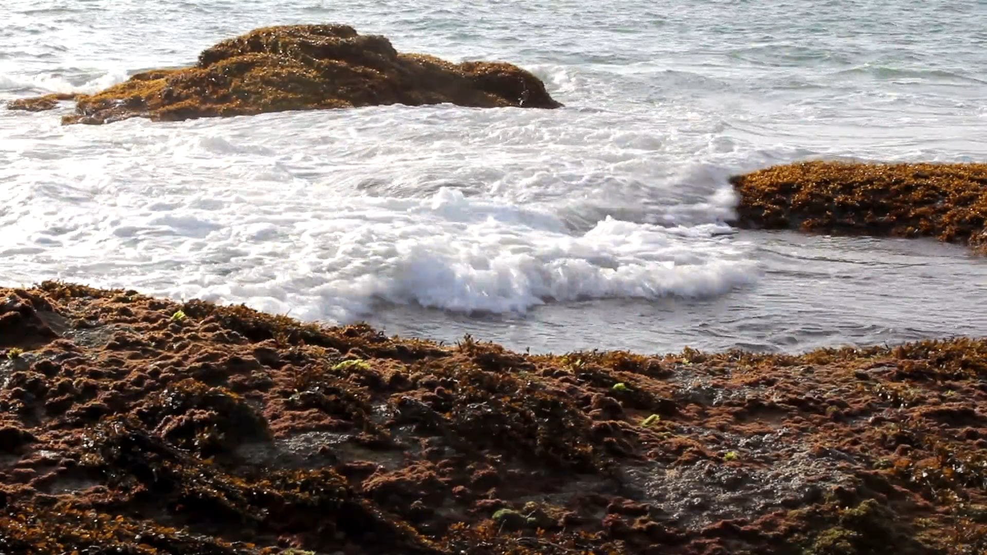 Waves Crashing On Rocks On Seashore