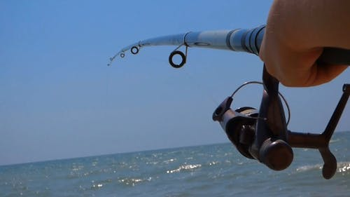 Close Up Video Of Fishing Rod