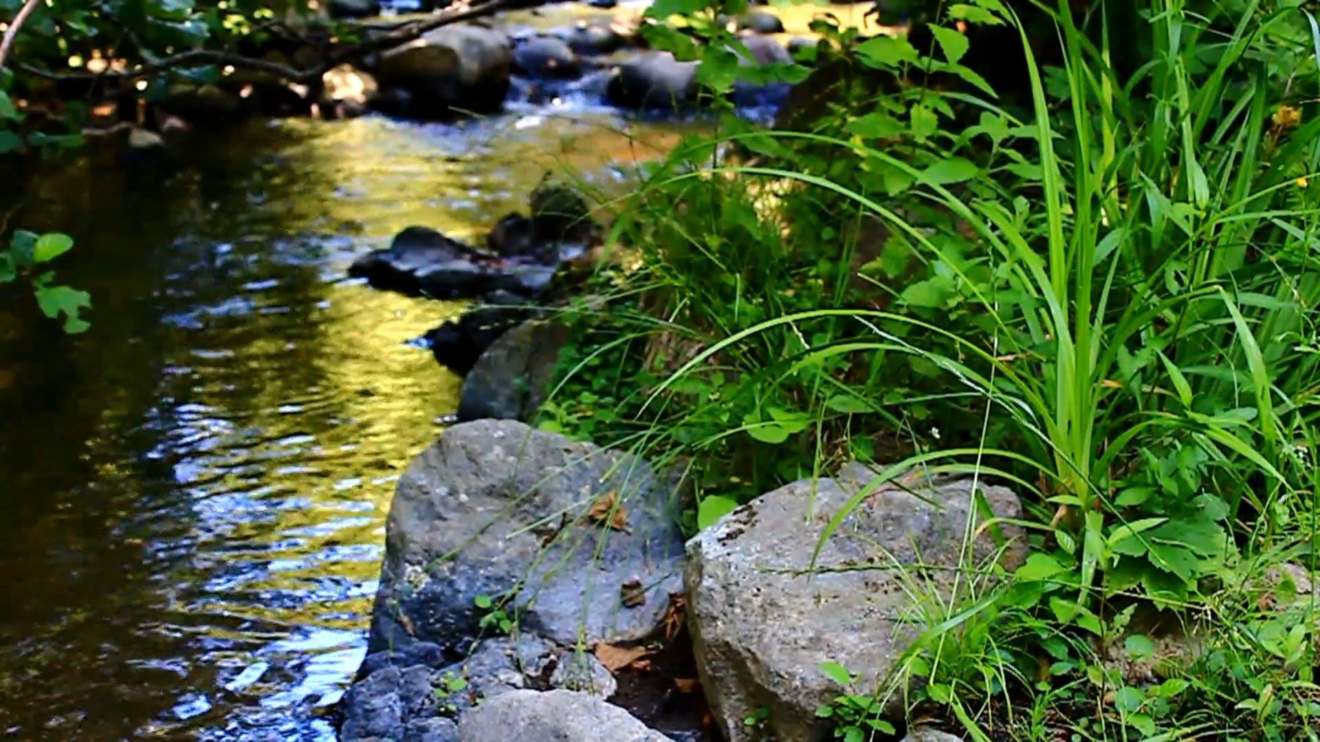 River Water Flowing
