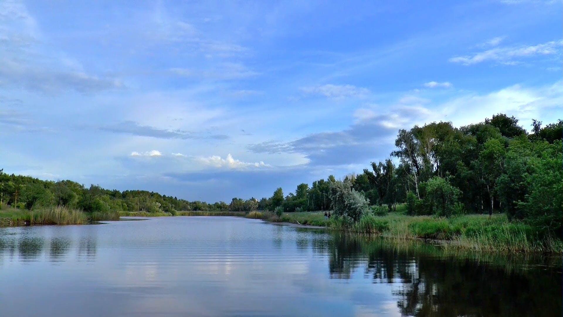 Walking Near The Lake
