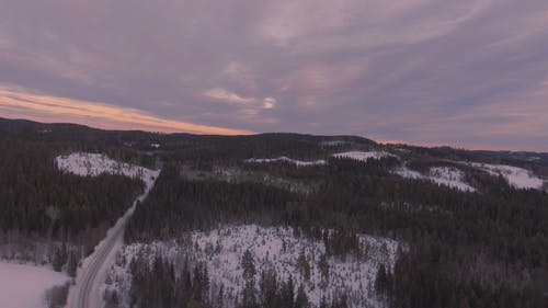 Aerial Shot Of Snowy Forest