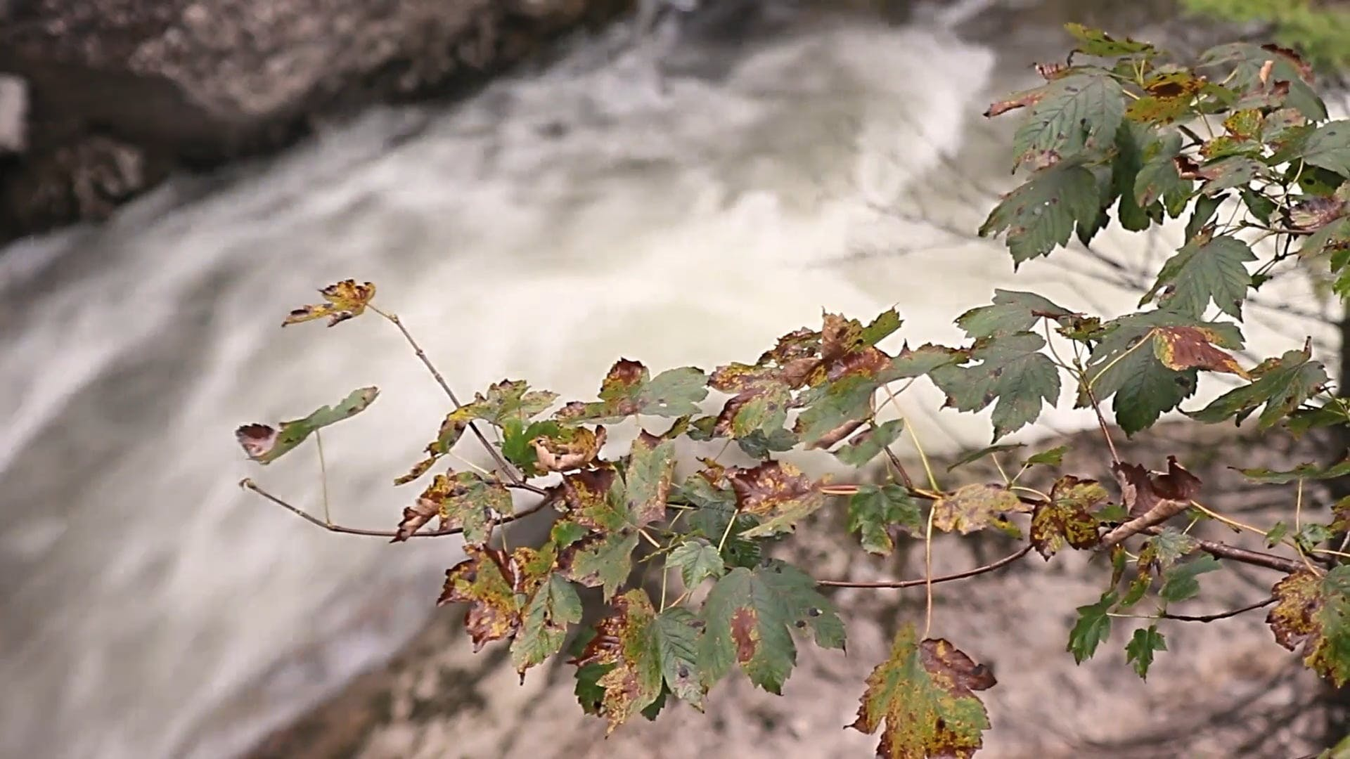 Video Of Waterfall