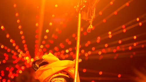Traditional Festival Of Indians